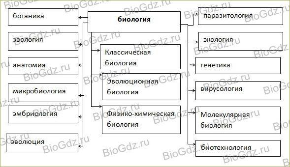 Тема 1.1. Краткая история развития биологии. Методы исследования в биологии - 1