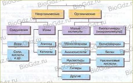 Тема 2.2. Химический состав клетки - 1