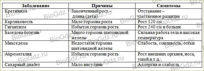 14. Эндокринная система - 3
