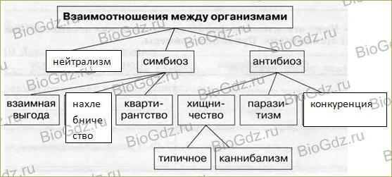 §53. Взаимоотношения между организмами - 1